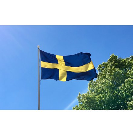 Svensk Båtlagga före 1906